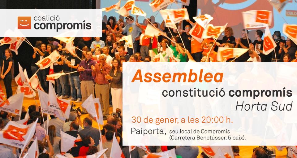 Cartell Constitució Compromís Horta Sud